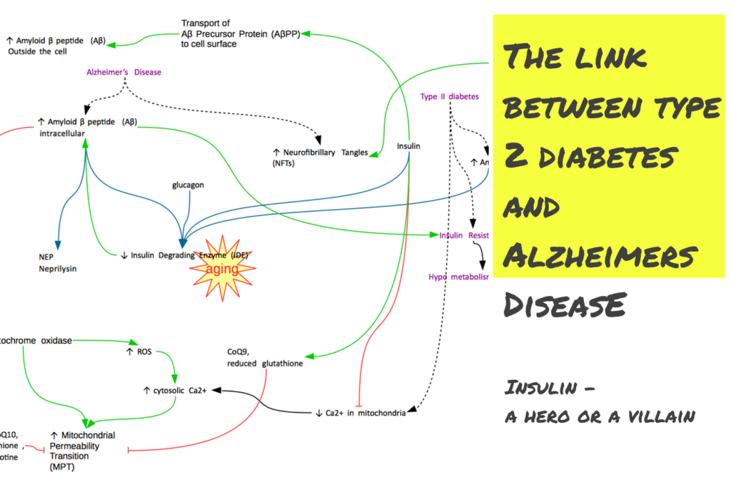 Type 2 Diabetes & Alzheimer's