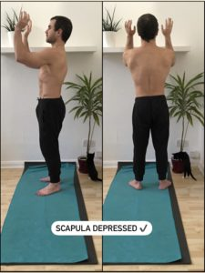 Scapula depression keeps the neck pain-free